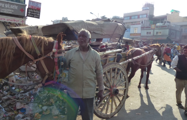 zip lining @ mehrengarh fort zip lining @ mehrengarh fort - dec 2013, India